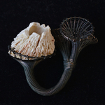 seapock-barnacle-with-three-chalices-maja-houtman-silver